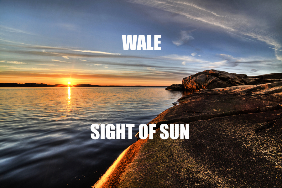 Wale- Sight Of The Sun