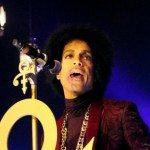 Prince_2015_2