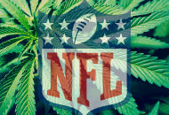 The NFL Could Allow Marijuana In Place of Addicting Painkillers for Players
